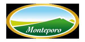 monteporo_logo